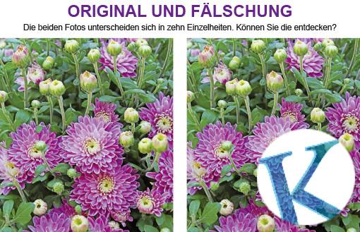 Original und Fälschung